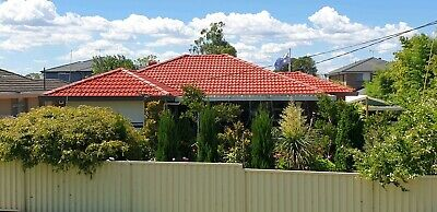 Aus Roof Painting